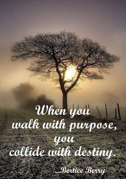 Walk_with_Purpose.JPG