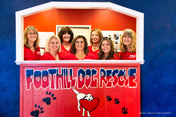 Foothill Dog Rescue