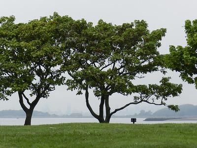 2012 September Georges Island
