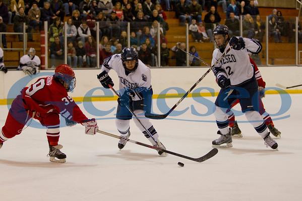 Men's Ice Hockey - SUNYAC Playoffs 02/26/11