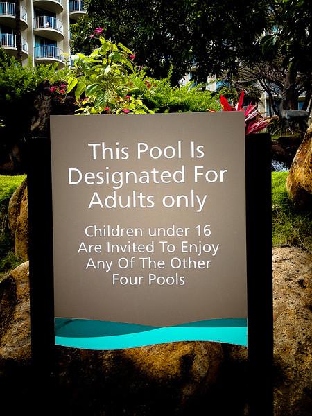 westin adult pool.jpg