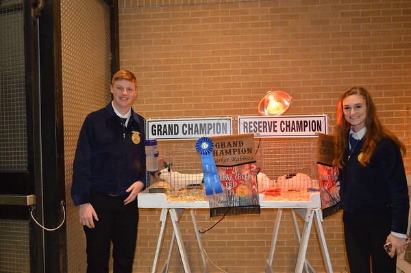 FFA Livestock Show and Auction