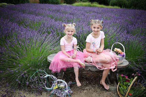 Lavender (new)