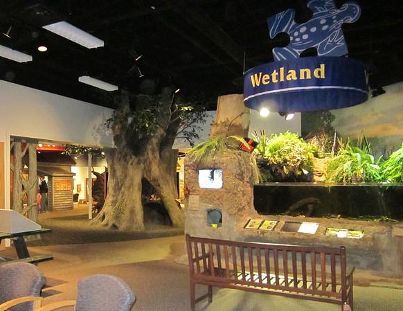 Athens, GA - Sandy Creek Nature Center