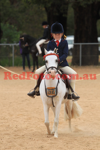 2014 10 25 Gidgegannup Agricultural Show Oficial Hack Ponies