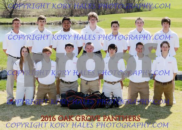 2016 OGHS Boys Golf
