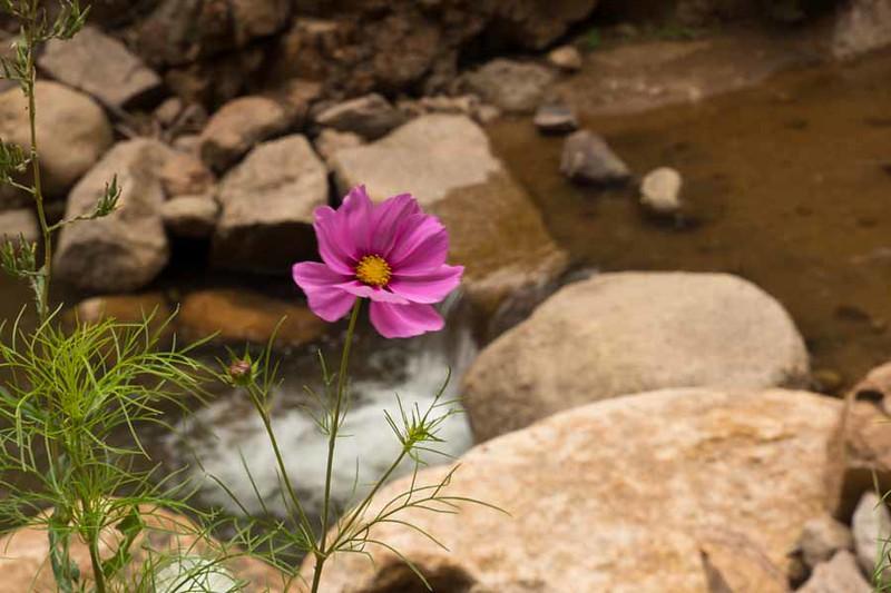 Colorado Springs-94.jpg