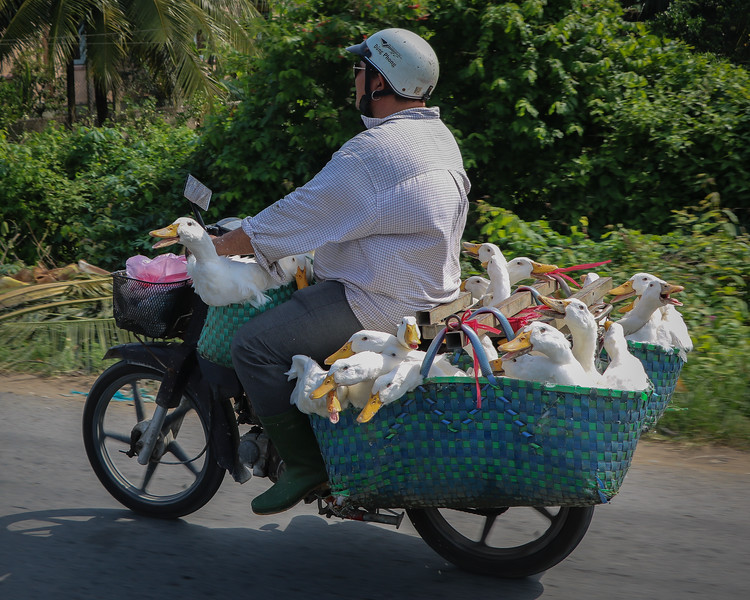 Vietnam-2018-2033.jpg