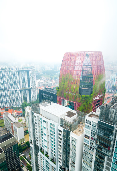 OAsia Hotel Singapore (2 of 1).jpg