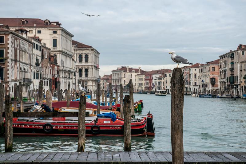 Venezia (40 of 373).jpg