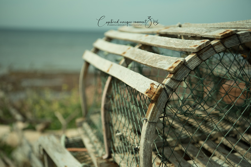 Lobster trap at Point Prim, PEI