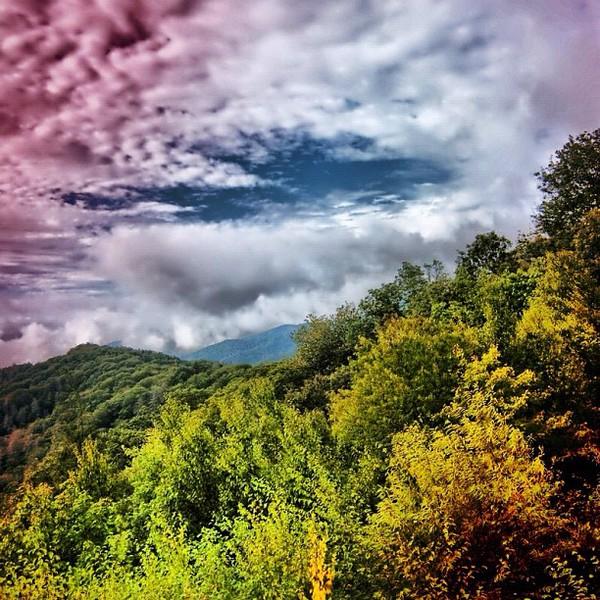 2011-10-14_1318551578.jpg
