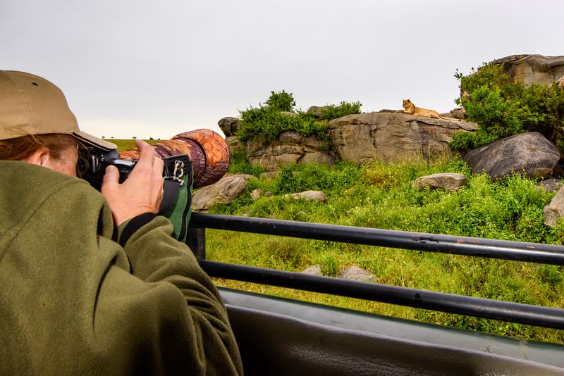 Lion Rock.jpg