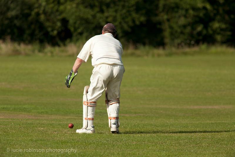 110820 - cricket - 382.jpg