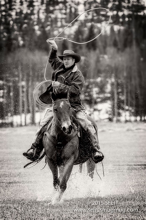Montana Wild Horses Roundup / Wranglers