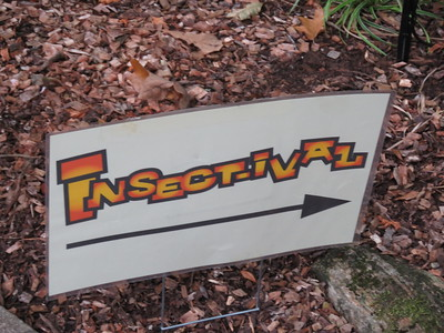 28th Insectaval