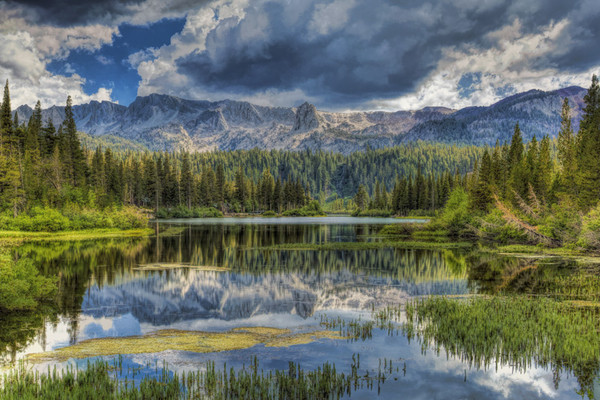 August 21 - Busy day at Twin Lakes.jpg