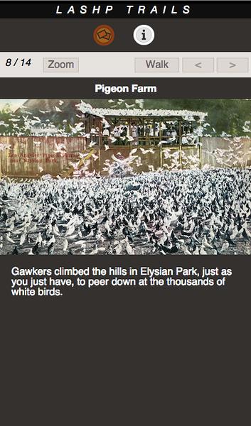 PIGEON FARM 08.png