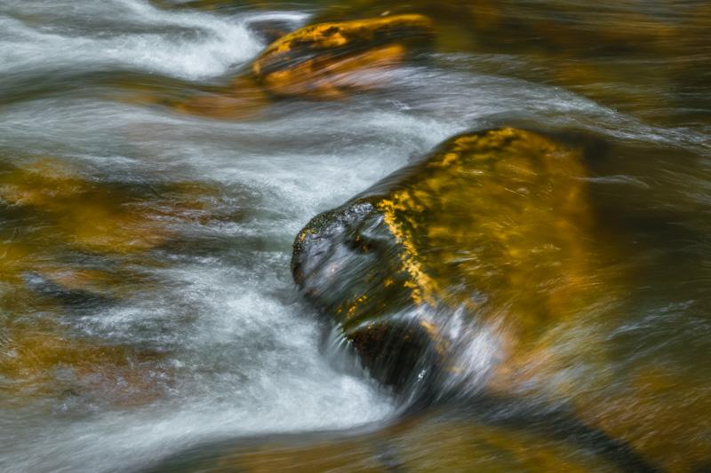 FRESH WATER   99