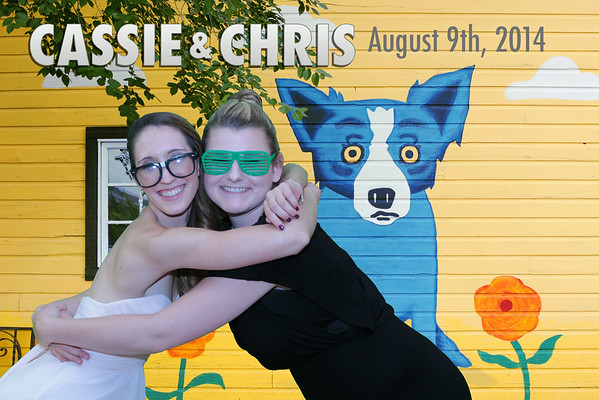8.9.14 Cassie + Chris Cocozzella
