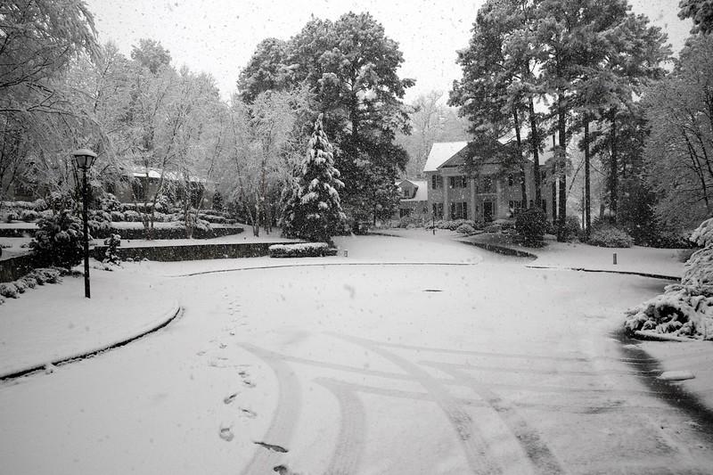 snow_o1_2018_010.jpg