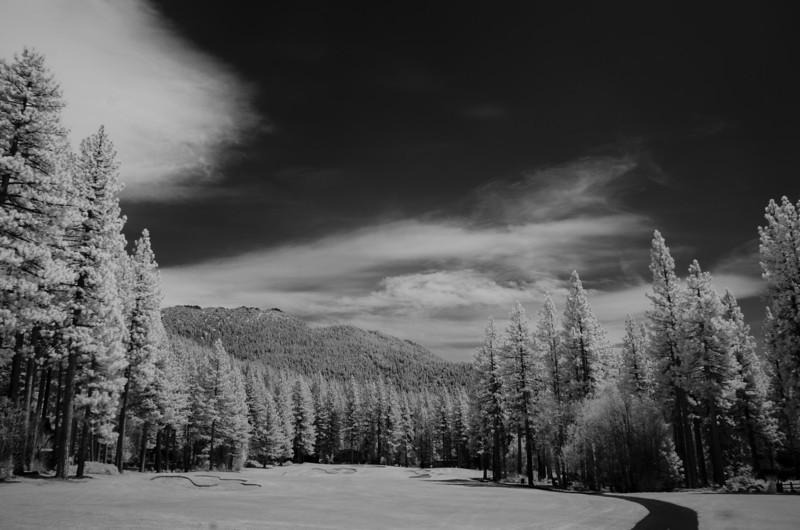 tahoe-2007.jpg