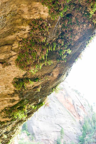 Standing under Weeping Rock.
