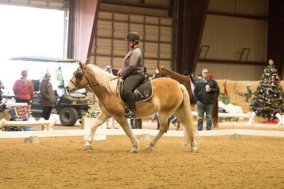 Horse 615