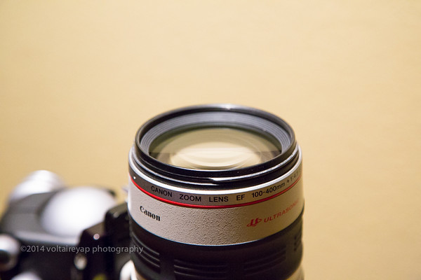 Canon 100 - 400 Lens for Sale