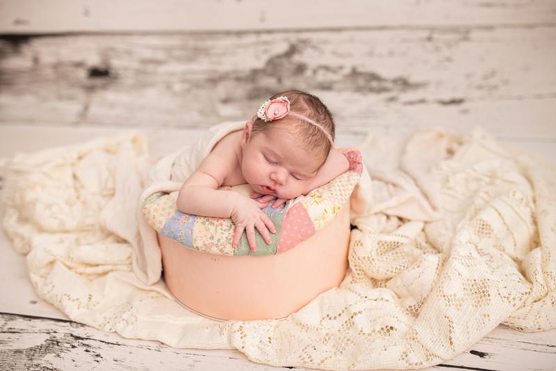 Cook Newborn-1.jpg