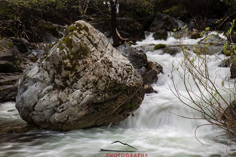 Bartlett Creek Winter Run 2