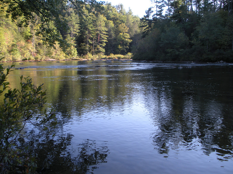Sandy Ford