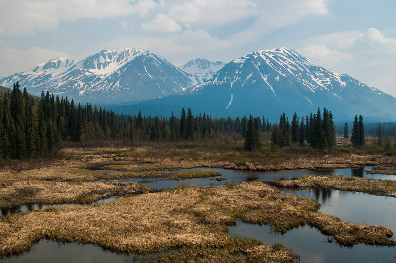 Alaska_Day2_449E.jpg