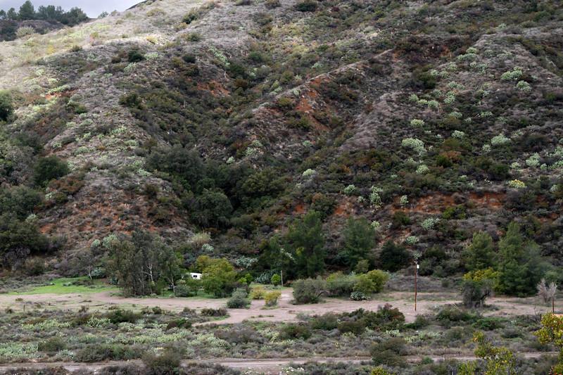 32633-Trabuco-Canyon-Rd-Mitchell-East-Trabuco-Canyon_67.JPG