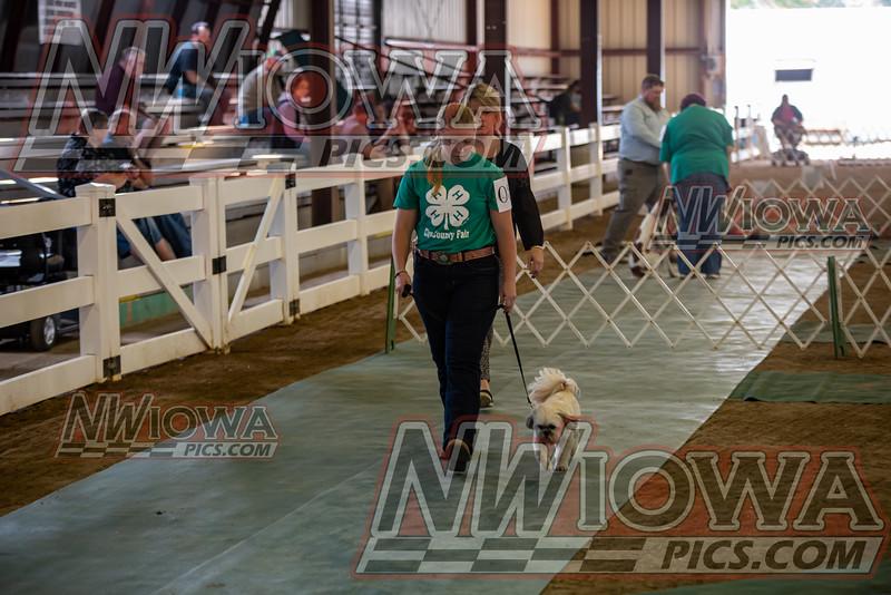 Clay County Fair - Day 5 - 9 - 15 - 21