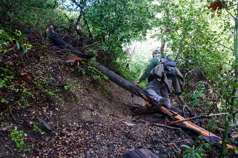 20160218062-Gabrielino Trail Scouting.JPG