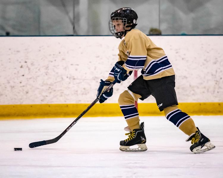 2018-2019_Navy_Ice_Hockey_Squirt_White_Team-105.jpg