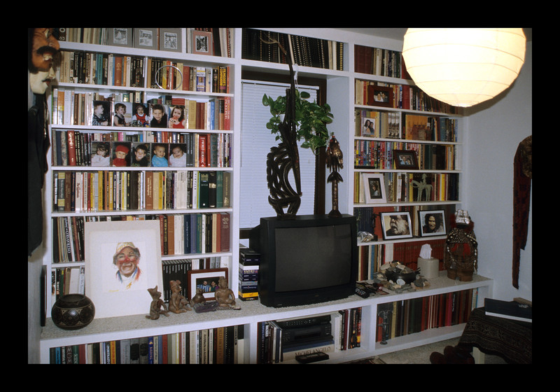 34. North wall of shelves in first floor Library-Bedroom.jpg