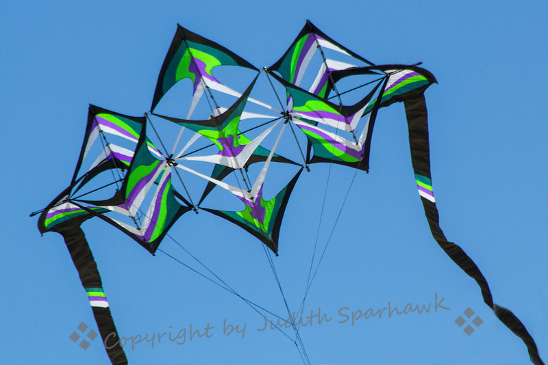 Kite Flying ~ This intricate kite was at the kite festival today at Huntington Beach Pier.