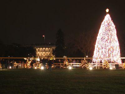 Washington DC National and Capitol Christmas Trees - 2003