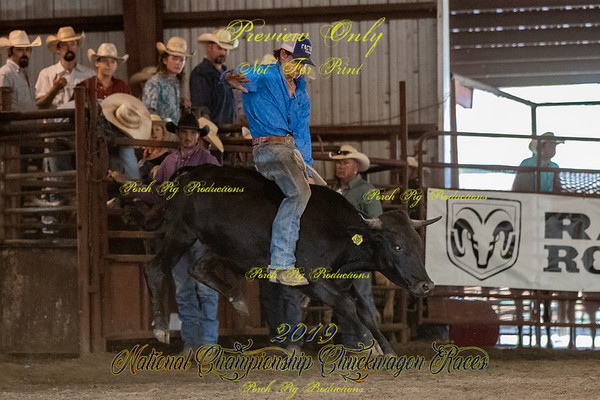 Friday  Ranch Rodeo
