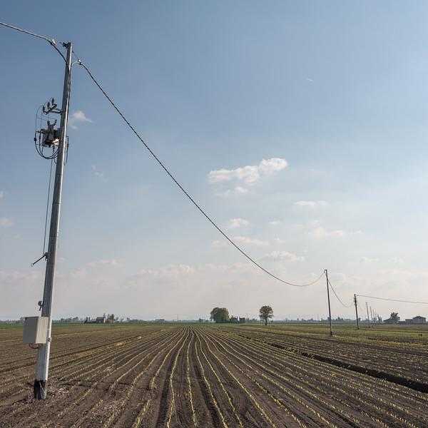 Power Lines - Bagnolo in Piano, Reggio Emilia, Italy - April 15, 2019