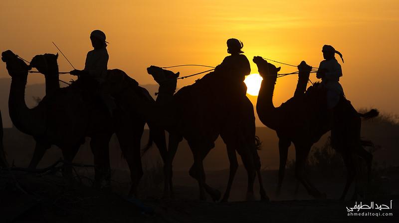 Oman (135).jpg