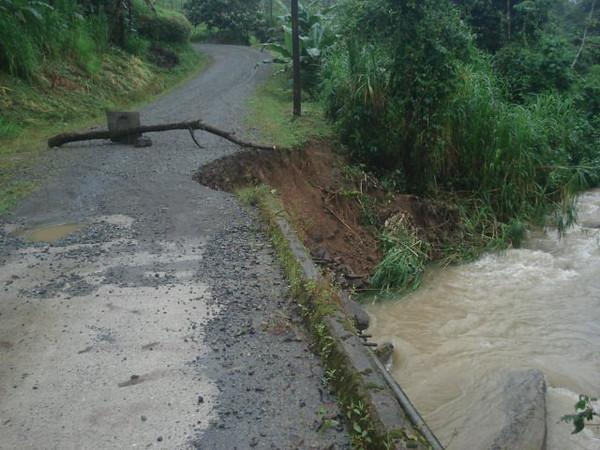 FloodsDominicalSideStreetLindaGray.jpg