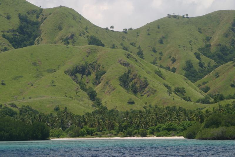 IN257-Komodo seashore.JPG
