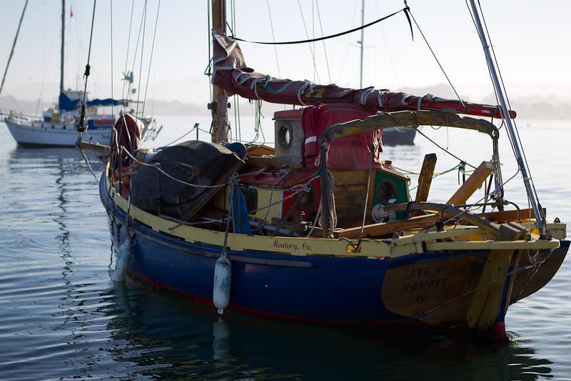 01-05-12_Monterey_Boat_Dive_Roeder_9.jpg