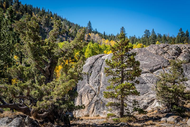 fall-mountains-color-leaves-rocks-8.jpg