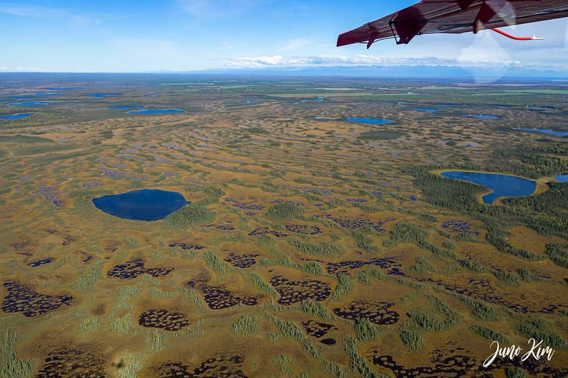 Rust's_Beluga Lake__DSC8826-2-Juno Kim.jpg
