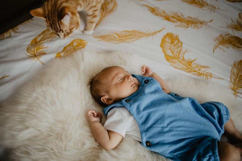 bash-newborn-11.jpg