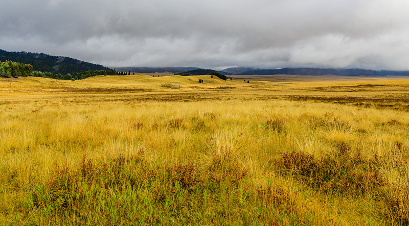 Valles Caldera, New Mexico - 2019